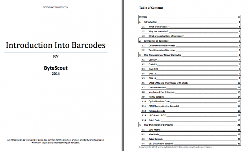 Introduction Into Barcodes by ByteScout