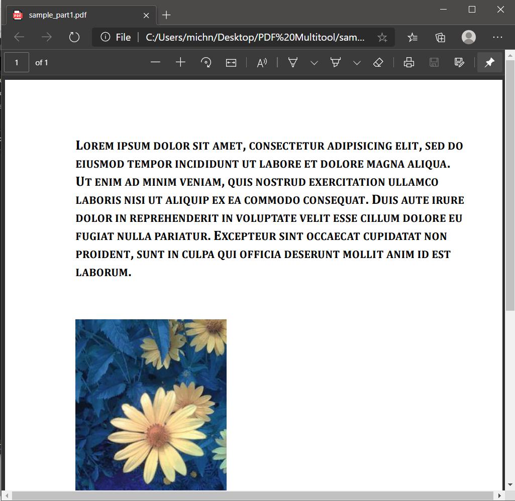 Split PDF Output Page 1