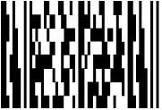 MicroPDF Barcodes