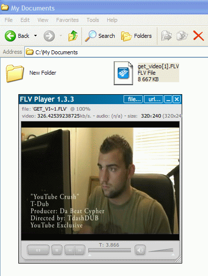 playing extracted FLV video using freeware FLV Player 1.3.3