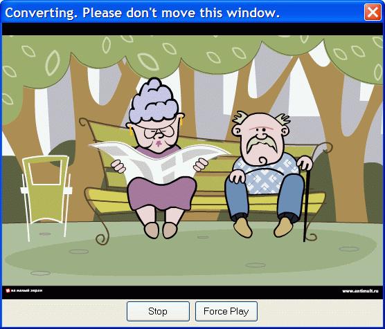 Flash to video conversion window