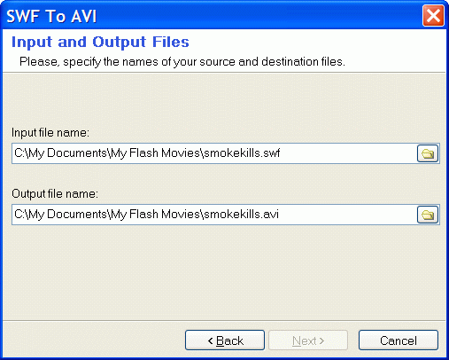 Input and output filenames for flash and AVI video files