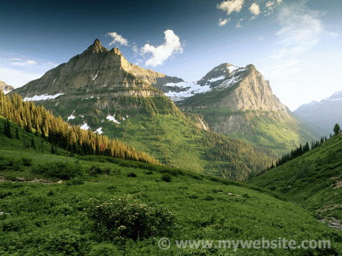Picture watermarked using Bytescout Watermarking utility